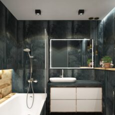 shower and tubs